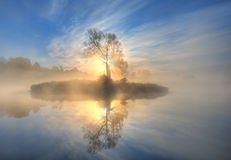 Small island. Early morning  on a lake with a small island Royalty Free Stock Images