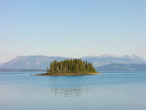 A small island on a freshwater lake in norther bc Stock Images