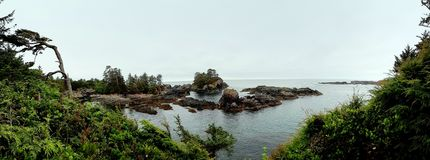 Small island off the coast of Ucluelet BC royalty free stock photos