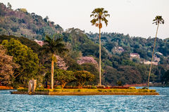 Small island with palm trees in the middle of Kandy lake Stock Image