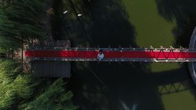 Small island seen from drone. Decorated island for wedding ceremony, seen from drone, lake view stock footage