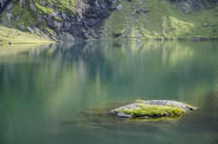 A small island in  a small mountain lake. A small island in a lake Royalty Free Stock Photos