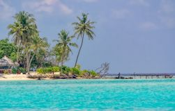 Somewhere in the Maldives. Small island somewhere in the Maldives royalty free stock photos