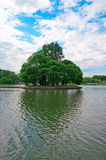 Small island with tall trees in the center of the pond Royalty Free Stock Photos