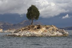 Small Island with Tree Royalty Free Stock Photos