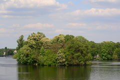 Small island with trees Royalty Free Stock Photos