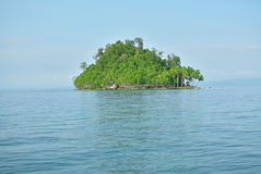 small island with trees. Small island with trees in the Pacific Royalty Free Stock Photos