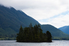 Small Island on Victoria Lake, BC. Small Forest Island on Victoria Lake with Blue Mountains in the Background Stock Photography