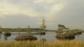 Small islands in the lake. Autumn daytime. Smooth dolly shot.  stock footage