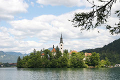 Small islet. Church in the middle of lake Bled, Slovenia stock images