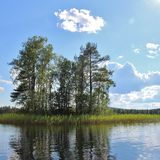 Small islet in a lake in northern Sweden Royalty Free Stock Image