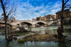 Small islets, and plants in the river Tiber Royalty Free Stock Images