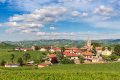 Small italian town and vineyards. Stock Image