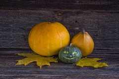 Small Jack O'Lantern on a wooden surface Stock Image