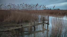 Small jetty by lake. At dusk. Utvalinge, Sweden stock video footage