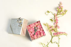 Small key inside a silver box, Wedding. A small key inside a silver box and decorated with pink flowers. White background. It refers to the idea of a very Royalty Free Stock Photography