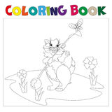 Small kitten coloring book. Cat playing in the meadow coloring book Stock Photos