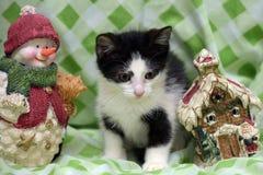 Small kitten near toy snowman Stock Photo