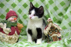 Small kitten near toy snowman Royalty Free Stock Images