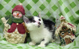 Small kitten near toy snowman Stock Image