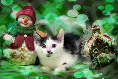 Small kitten near toy snowman Royalty Free Stock Photos