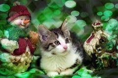 Small kitten near toy snowman Royalty Free Stock Photos
