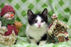 Small kitten near toy snowman Royalty Free Stock Image