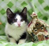 Small kitten near toy snowman Stock Photography