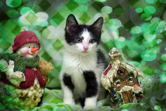 Small kitten near toy snowman Royalty Free Stock Photography
