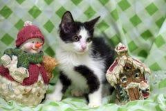 Small kitten near toy snowman Royalty Free Stock Photography