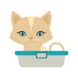 Small kitten sitting blue eyes bathtub Royalty Free Stock Photography