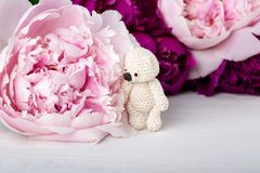 Teddy bear and peony stock photography