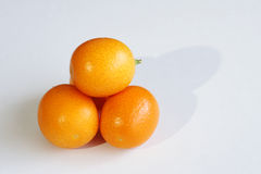 Small kumquat Stock Image