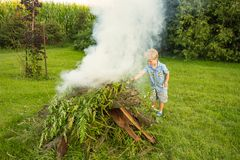 A young boy building a bonfire Royalty Free Stock Image