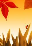 Small ladybug Stock Photography