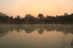 Small lagoon with fog in morning Stock Images