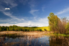 Small lake Stock Photography
