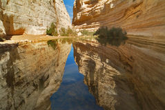 Small lake. Picturesque canyon Ein-Avdat in desert Negev in Israel royalty free stock image