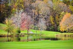 Small lake Royalty Free Stock Photo