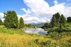Small lake in Altai, Siberia Stock Images