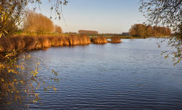 Small lake in autumnal sunlight Stock Photo