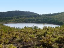 Small lake at the Azores Royalty Free Stock Images