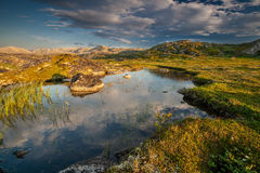 Small lake behind a polar circle Stock Photography