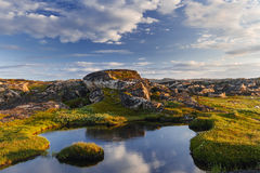 Small lake behind a polar circle Royalty Free Stock Photography