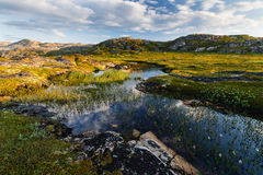 Small lake behind a polar circle. Royalty Free Stock Photos