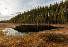 Small lake at a bog near a ridge Stock Photos
