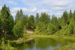 Small lake in the forest. Finland, Lapland Stock Photos