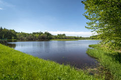 Small lake in the forest, Southern Poland Royalty Free Stock Images