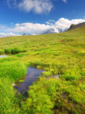 Small lake on green. Meadow with mountain on background Stock Photography