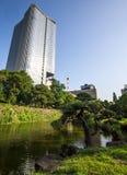 Small lake in hibiya park. Summer scenery along a small lake in hibiya park in tokyo, japan royalty free stock photography
